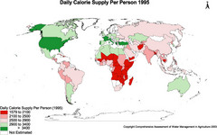 Daily Calorie Supply Per Person 1995